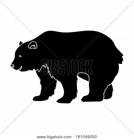 Canadian brown bear. Canada single icon in black style vector symbol stock illustration .
