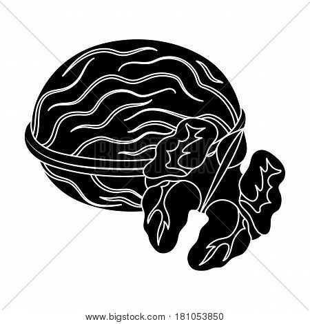 Walnats in the shell.Different kinds of nuts single icon in black style vector symbol stock web illustration.