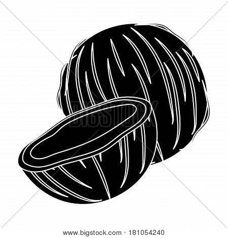 Coconat.Different kinds of nuts single icon in black style vector symbol stock web illustration.