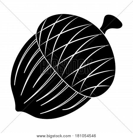 An acorn with a hat.Different kinds of nuts single icon in black style vector symbol stock web illustration.