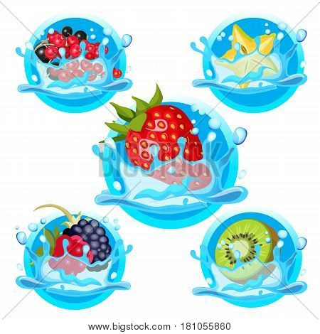 Fresh strawberry, healthy mango, black and red currant, organic carambole, wild blackberry and raspberry in water splashes vector illustration logo design isolated on white. Fruits in liquid