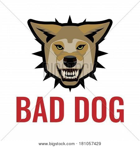 Bad dog poster vector illustration on white background. Beware of dogs sign with angry toothed animal, caution about danger, informative label precaution about angry canine on protected area