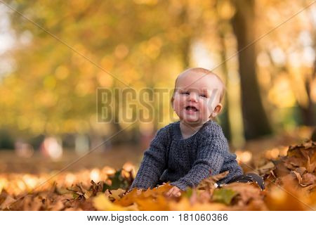 Beautiful baby girl in the warm autumn light with golden leaves on trees