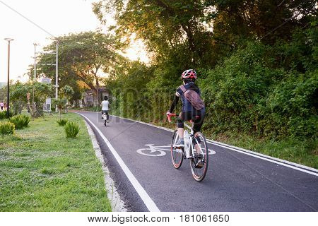 Bicycle lane in the park, cycling, Park cycle bike