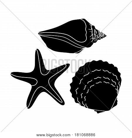 Seashells from the bottom of the sea.Summer rest single icon in black style vector symbol stock web illustration.