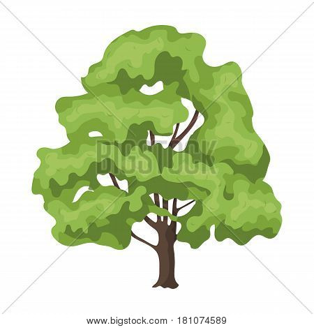 Canadian maple. Canada single icon in cartoon style vector symbol stock illustration .