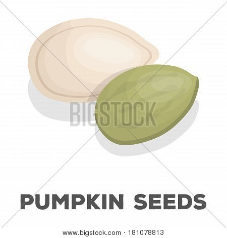 Pumpkin seeds.Different kinds of nuts single icon in cartoon style vector symbol stock web illustration.