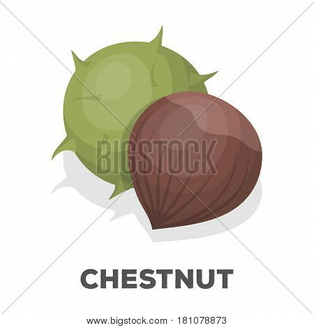 Chestnut.Different kinds of nuts single icon in cartoon style vector symbol stock web illustration.