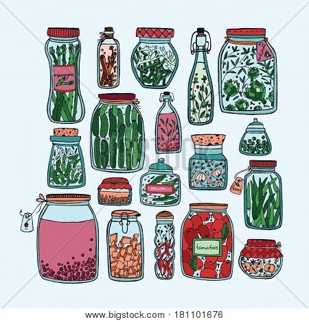 Set of pickled jars with vegetables, fruits, herbs and berries on shelves. Autumn marinated food. Colorful Illustration