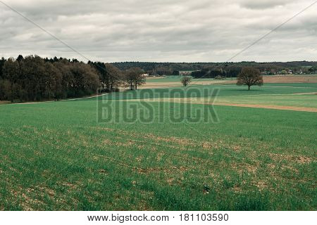 Hilly Rural Landscape With Forest And Farmland Under Cloudy Sky.
