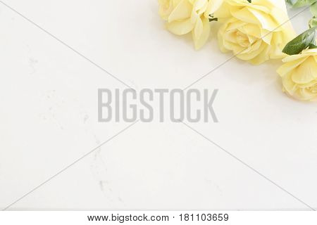 Yellow Roses Over Marble Background, Border Of Yellow Roses. Floral Frame With Yellow Flowers On Woo