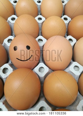 Dozen of chicken egg for cooking breakfast in the egg storage tray with blur background Easter egg for hiding Easter egg happy smiling face