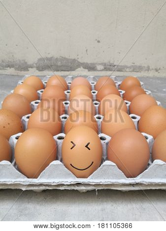 Dozen of chicken egg for cooking breakfast in the egg storage tray with blur background Easter egg for hiding Easter egg smiling face at the front of egg row