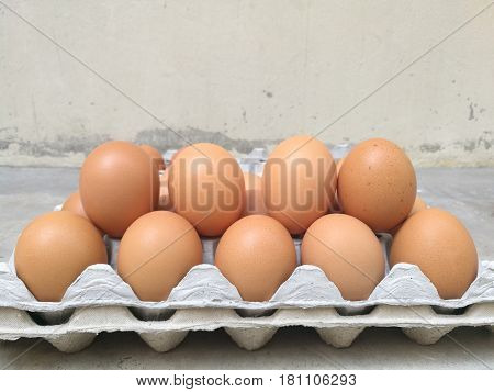 Dozen of chicken egg for cooking breakfast in the egg storage tray with blur background, 2 row of egg, Easter egg for hiding