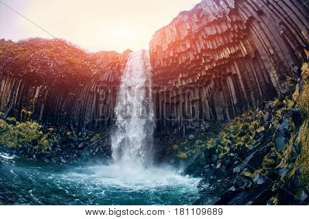 Svartifoss Black Fall , Skaftafell, Iceland. Dramatic waterfall surrounded by dark basalt lava hexagonal columns.