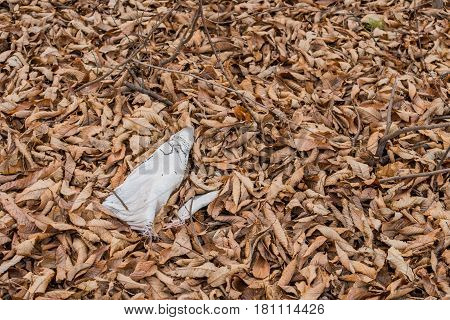 White burlap bag laying on ground covered with brown leaves and twigs