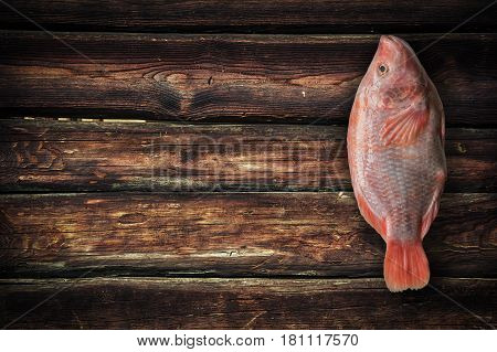 Red tilapia fish on dark brown wooden background. Top view