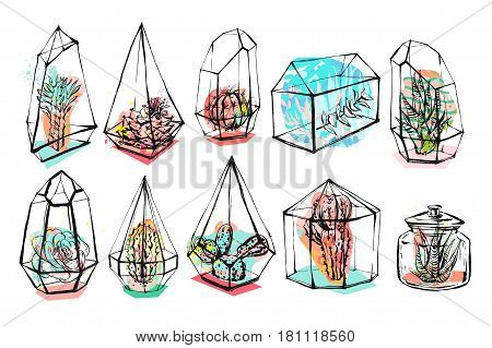 Hand drawn vector abstract graphic creative succulentcactus and plants in terrariums collection set colorful artistic brush painted isolated on white background.Unique unusual hipster trendy design.