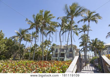 Naples Fl USA - March 18 2017: Luxury beachfront villa surrouded by coconut palm trees in Naples. Florida United States