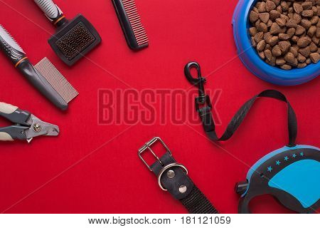 Collar, bowl with feed, leash, delicacy, combs and brushes for dogs. Isolated on red background. Top view. Still life. Copy space