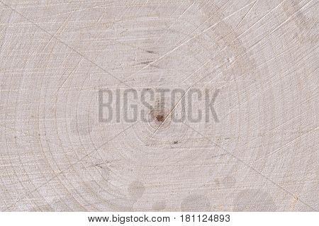 big piece of wood with highly detailed texture of central core