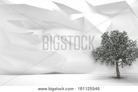 Pyrus Tree with a White Abstract Wall