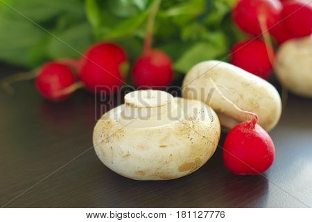 Radish and Champignon closeup. Salad vitamin eating. Organic healthy vegetarian food ingredients. Dieting meal.