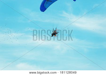 Warsaw, Poland - August 19, 2012: Paraglider flying over with his parachute among a flock of birds in Poland