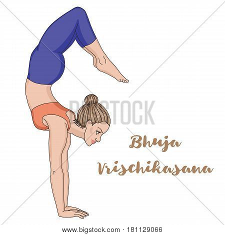 Women silhouette. Arm Balance Scorpion Yoga Pose. Bhuja Vrischikasana. Vector illustration