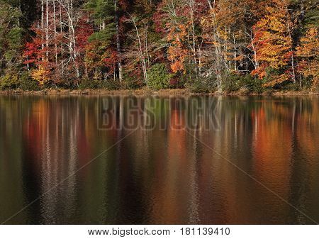 Beautiful fall colors reflected in the calm, mirror-like waters of Lake Fairfield in southern North Carolina during autumn