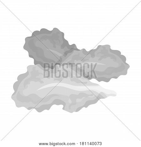 Salad leaves.Burgers and ingredients single icon in monochrome style vector symbol stock web illustration.