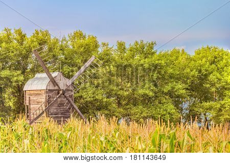 Wooden windmill in a corn field on a background of green trees. Summer rural landscape with limited depth of field.