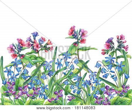 Flower frame of the Fragrant violets, lungwort and Scilla bifolia blue. Hand drawn watercolor painting on white background.
