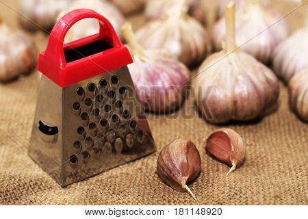 Small metal grater and fresh garlic vegetables