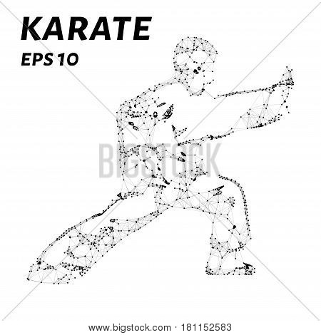 Karate Consists Of Points, Lines And Triangles. The Polygon Shape In The Form Of A Silhouette Of Kar