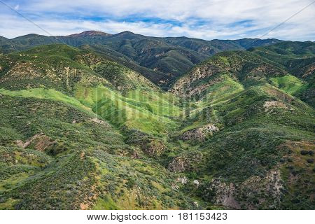 Rolling Hills In California Wilderness