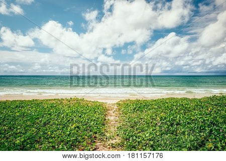 Tropical beach scenery at Andaman sea in Phuket, Thailand. Exotic sea view of tropical summer paradise beach and green foliage lawn of Phuket island with sunny sky and white clouds on horizon