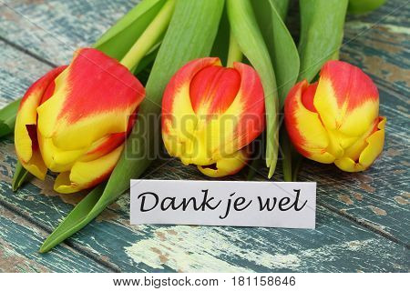 Dank je wel (which means thank you in Dutch) card with red and yellow tulips