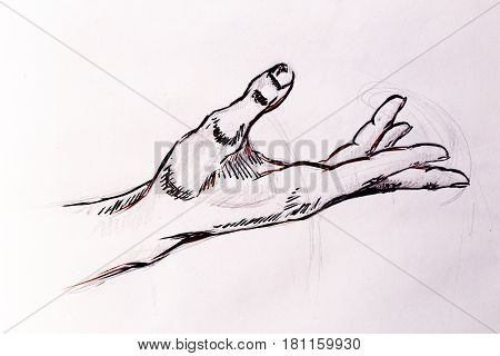Drawing hand, pencil sketch on old paper
