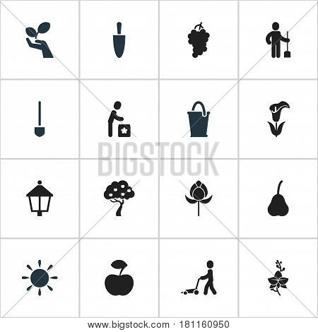 Set Of 16 Editable Plant Icons. Includes Symbols Such As Spade, Fresh Fruit, Digger Human And More. Can Be Used For Web, Mobile, UI And Infographic Design.