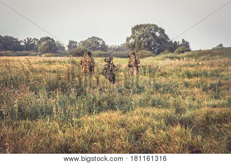 Group of hunters crossing through tall grass in rural field at dawn during hunting season