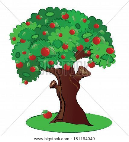 Summer fruit aplle tree illustration isolated in vector format