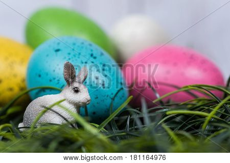 Minature rabbit sits in grass next to decorated Easter Eggs