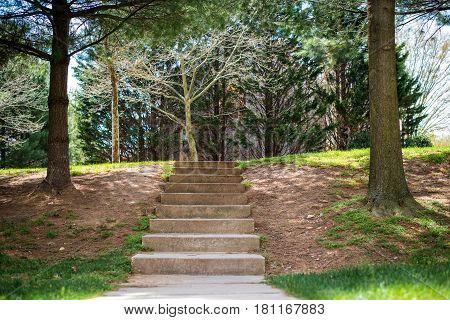 outdoor staircase steps in park outside during walk