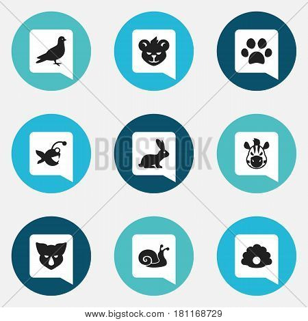 Set Of 9 Editable Zoology Icons. Includes Symbols Such As Rhinoceros, Rabbit, Escargot And More. Can Be Used For Web, Mobile, UI And Infographic Design.