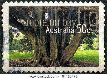 AUSTRALIA - CIRCA 2005: A used postage stamp from Australia depicting an image of Moreton Bay in Australia circa 2005.