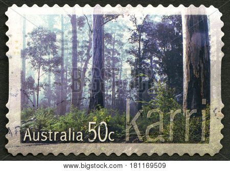 AUSTRALIA - CIRCA 2005: A used postage stamp from Australia depicting an image of the Karri tree also known as the Eucalyptus Diversicolor circa 2005.