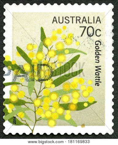 AUSTRALIA - CIRCA 2014: A used postage stamp from Australia depicting an illustration of the flowering plants from the Golden Wattle tree circa 2014.