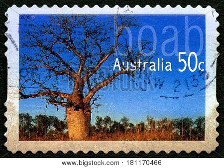 AUSTRALIA - CIRCA 2005: A used postage stamp from Australia depicting an image of a Adansonia Gregorii or also known as a Boab tree circa 2005.
