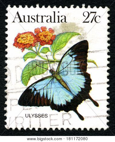 AUSTRALIA - CIRCA 1983: A used postage stamp from Australia depicting an illustration of the Ulysses Butterfly circa 1983.